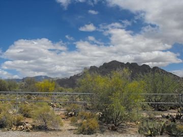 Oro Valley house rental - Pusch Ridge in the Catalina Mt. range.