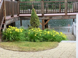 Landscaped yard with deck above and patio below - Alton Bay condo vacation rental photo