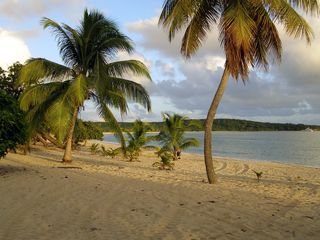 Vieques Island house photo - It's an easy walk to world-reknowned Sun Bay beach