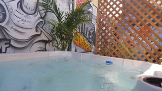 Los Angeles house photo - Venice jacuzzi safari. the plants will all be lush by summer, bambo and palm