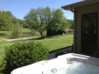 Asheville cottage photo - ~Private hot tub~