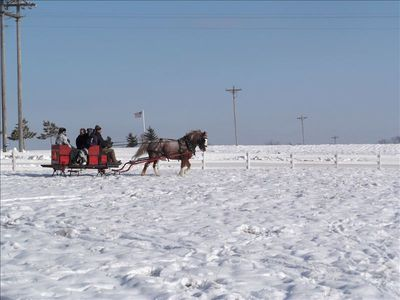 Take a Horse drawn sleigh ride thru the bluffs of Whalan