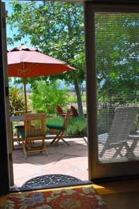 View from Family Room.  Sweeping views of our vineyard and surrounding farmland.