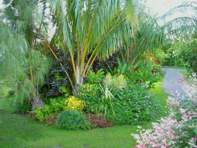 One of many gorgeous tropical gardens on the estate...a botanical paradise.