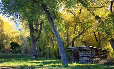 Historic cabin by creek