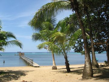 Coconut beach with private dock