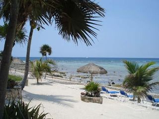 Akumal condo photo - A Close Up of Our Beach!