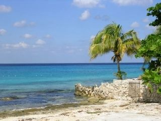 Sites you see while strolling on the main street! - Cozumel condo vacation rental photo