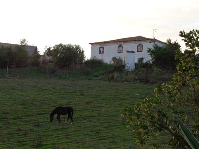 Rustic property for 8 Pax in the middle of the nature of the Algarve