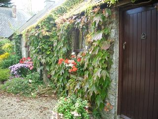 County Limerick cottage photo - Welcome to Coolbeg
