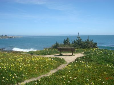 Stroll to many meditative spots along West Cliff Drive~