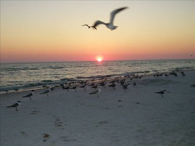 Siesta key Beach Voted Number 1 Beach in America