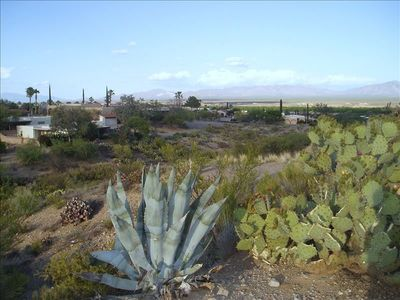 From back of home, arroyo area, has private gorgeous view of birds and wildlife!
