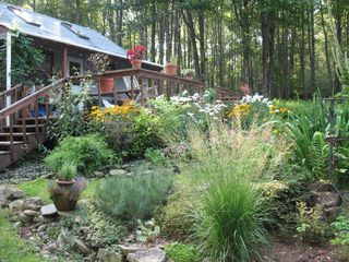 Flower gardens in full bloom! - Claryville cabin vacation rental photo