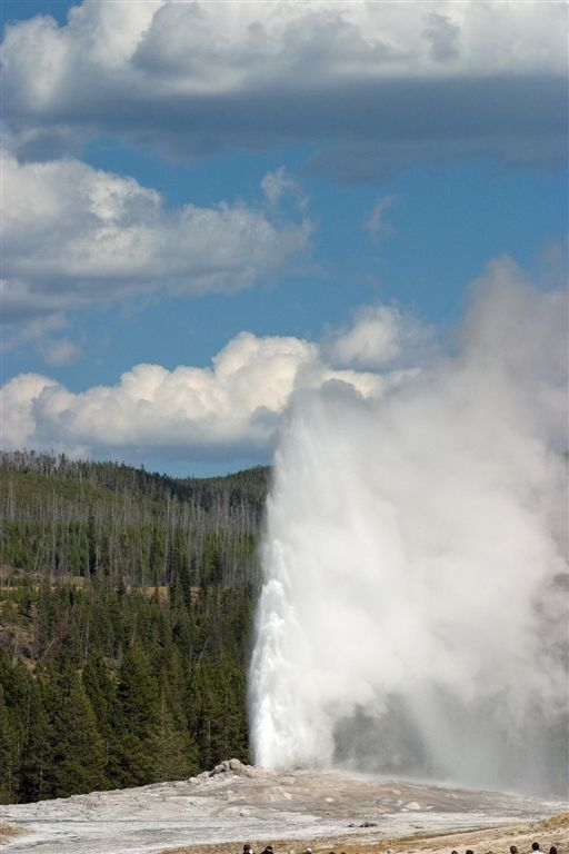 Old Faithful - Simply Amazing