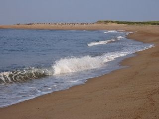 Southern Portion of Plum Island