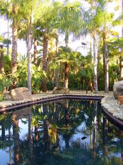 Ojai estate photo - Black bottom lagoon style pool & spa with over 500 palms surrounding you