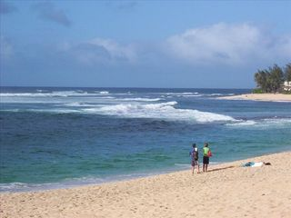 Haleiwa condo photo - Life Time Memories for Honeymooners and Anniversary Couples