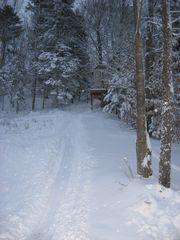 Sledding hill and tree house - Stowe house vacation rental photo