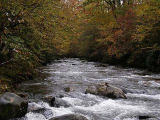 Ellijay cabin photo - Coosawattee River flowing through the resort not far from Star Seasons Retreat