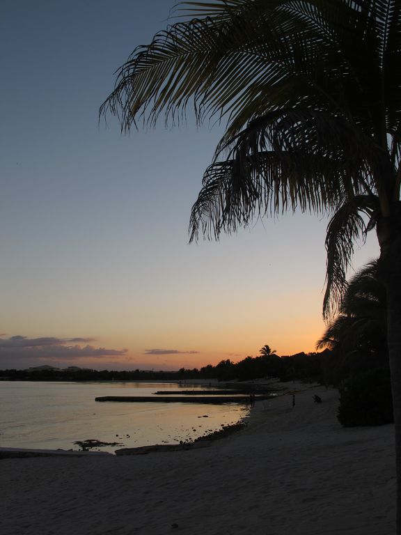 Watch as the sunsets behind the palm trees from private beach