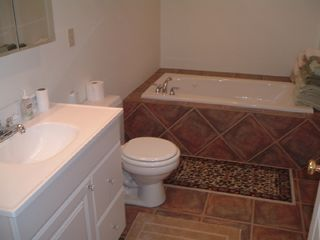Manistique house photo - master bathroom