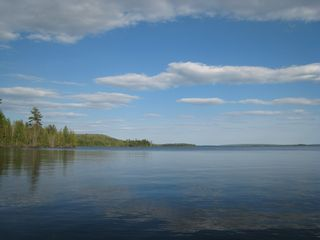 Alexander house photo - View across lake to 17,000 acre Moosehorn National Wildlife Refuge