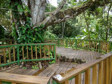 Large Yoga Platform overlooking small creek and Banana Island.
