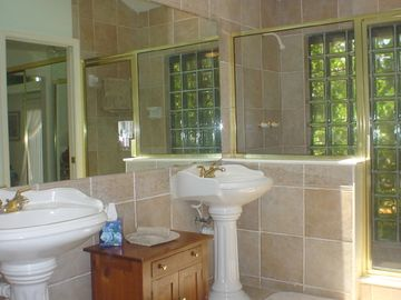 Master bath with walk-in shower & soaking tub