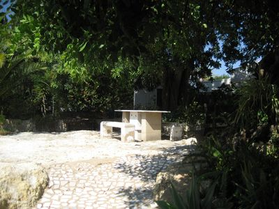 Seating area on rocks beneath carob trees