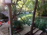 Crystal clear water and Manatees daily right off the dock