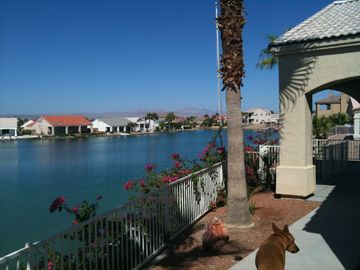 Mohave Valley house rental - Back yard, view of private lake