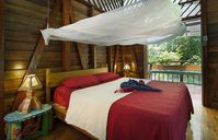 Dream Caribbean Ecolodge up to 4 people, Jungle Views, steps to pristine beach