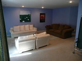 Basement with TV, ping pong, card table, full bath, pull out sleeper sofa