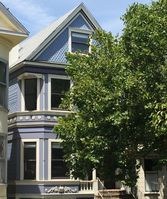 Charming Inner Sunset/Golden Gate Park Condo walkable to UCSF with