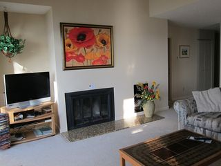 Glen Arbor condo photo - Living room Fireplace, flat screen TV, DVD player & DVD's
