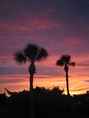 Harbor Island condo photo - Sunset @ Harbor Island