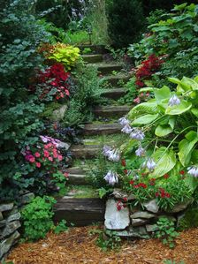 Curved steps leading to garden.