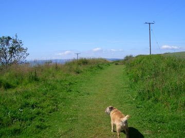 One of Cass's favourite walks.