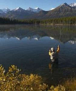 Fly fishing...what an amazing place to fish, 30 lakes in Chaffee County.