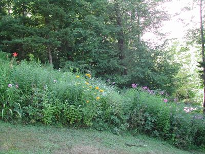 Belmont chateau / country house rental - Wildflower gardens.