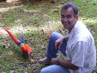 Dominical villa photo - Scarlet McCaws, Aricaris, Toucans, Parrots, Motmots up close and personal