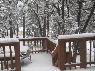 Ruidoso house photo - Watch for birds feeding near back decks