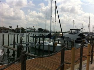 Clearwater Beach condo photo - Fish off the docks