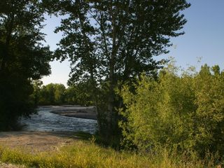 Bozeman house photo - West Gallatin River beside our property