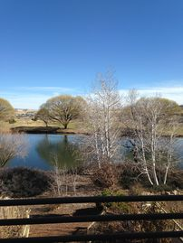 Prescott Valley house rental - Very private property, cool and green in the summer!