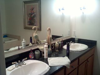 Englewood condo photo - MASTER BATH SINKS