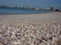 Discover The Charm Of St Pete Beach