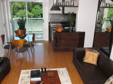1st FLOOR LIVING ROOM W/ BALCONY AND JARDIM BOTANICO VIEW