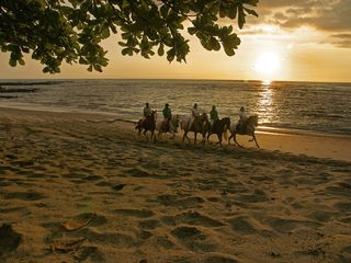 Playa Avellana house photo - Horseback riding at sunset in Playa Langosta